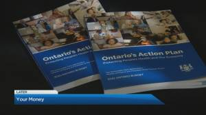 How will Ontario's second pandemic budget affect your bottom line? Finance expert explains (04:47)