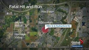 Man charged with 1st-degree murder after deadly hit and run in Rutherford (01:49)