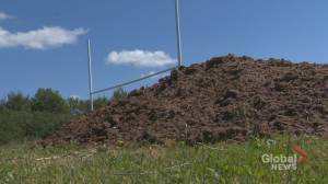 Volunteers fix up Prince Andrew High School field
