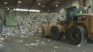 Recycling plant shutdowns leave Montreal in crisis