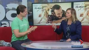Calgary Humane Society Pet of the Week: Persimmon (05:10)