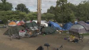 Renewed safety concerns at Oppenheimer Park