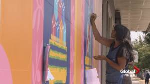 Mural project hopes to bring new life to Vancouver's Punjabi Market (01:06)