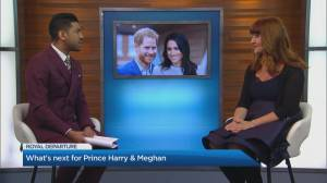 The fallout from Harry and Meghan's royal departure (03:34)