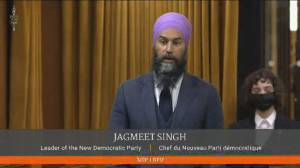 NDP push for 'excess profits' tax, Liberals say they raised taxes on wealthiest 1 per cent (02:17)