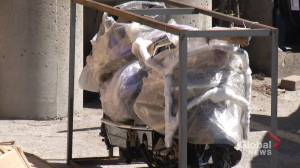 Pedal power in Peterborough amid the coronavirus pandemic