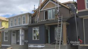 Alberta's home building industry could see huge decline in activity this year (01:47)