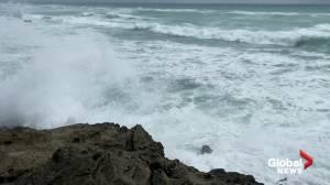 Bermuda prepares for Hurricane Paulette (02:15)