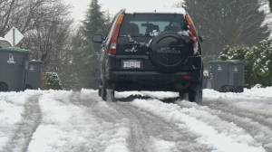 Snow blankets part of Metro Vancouver early Thursday morning (01:50)
