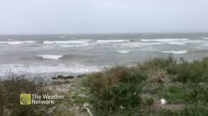 Winds pick up in Nova Scotia amid post-tropical storm Teddy (01:25)