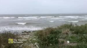 Winds pick up in Nova Scotia amid post-tropical storm Teddy (01:25)