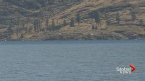 Dive team searching for Alberta man missing in Okanagan Lake