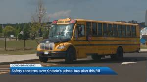 Safety concerns over Ontario's school bus plan this fall (03:24)