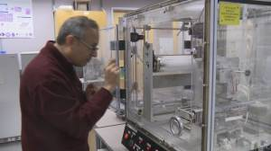 UBC researchers develop new cotton recycling method