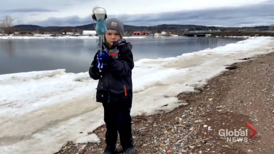 Click to play video: 'Four-year-old N.B. boy has mission to protect the planet'