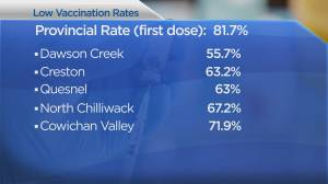 A look at B.C. cities with best and worst vaccination rates (01:36)