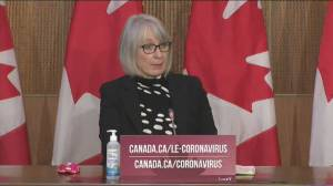 Coronavirus: Government can't stop corporations from buying vaccines for their employees, says Hajdu (01:34)