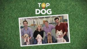 Top Dog Competition: Whose pooch is the 'Top Dog' at Global News?
