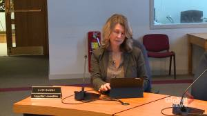Fredericton council votes to have more diverse council chambers, city committees