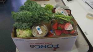 Taking action against food insecurity (04:55)