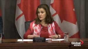 Freeland: 'We get our groceries thanks to truckers who drive back and forth across that border'