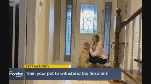 Kidde Canada's fire safety tips for pet owners (05:09)