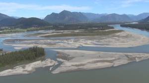 Fraser River under threat