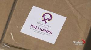 Kali's Wish care packages help comfort dogs with cancer (03:38)