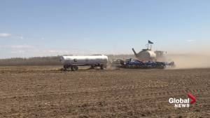 Alberta farmers start seeding earlier than normal (01:24)