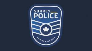 Province takes over Surrey police plan