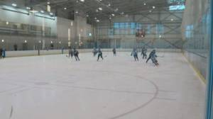 Minor hockey in Edmonton will return this year, but will look different
