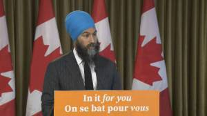 'Singh Surge' fails to pay off as NDP loses 15 seats (01:24)