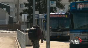 Free Edmonton Transit costing the city millions (01:30)