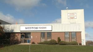 Weston Foods cuts an entire production line in Kingston