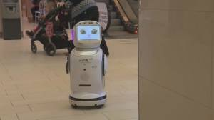 'Hey Mylo' robot designed to help seniors retain independence