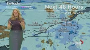 Global News Morning weather forecast: February 10, 2020
