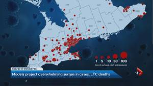 Coronavirus: Ontario models project as many as 20,000 cases per day, many more long-term care deaths (02:05)