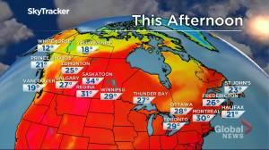 Winnipeg weather outlook: July 15 (01:54)