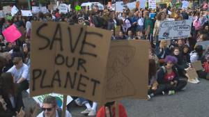 Millions take part in climate strike across B.C.