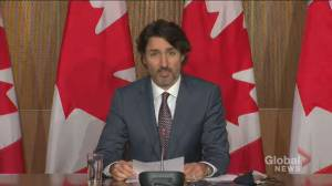 Trudeau says he's known about Fortin allegation for 'a number of weeks' (03:49)