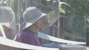 Arrests made in East Vancouver thefts targeting vulnerable seniors