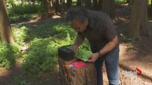 UBC scientists develop new invasive species scanner