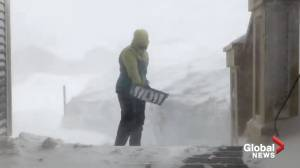 Newfoundlanders dig out as blizzard hits St. John's