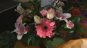 Edmonton-area flower shops grow sales during COVID isolation