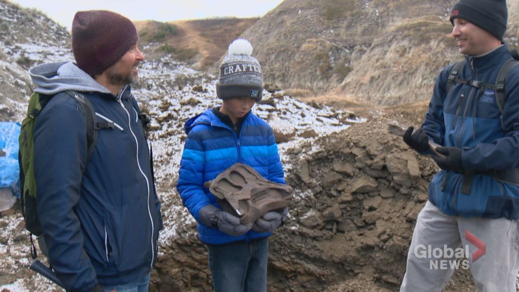 Click to play video 'Young Calgarian finds 69-million-year-old dinosaur remains'