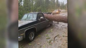 Creston couple survives traumatic ordeal during Labour Day windstorm (01:16)