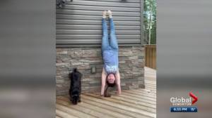 Edmonton trainer creates workout for both dog and owner (01:28)