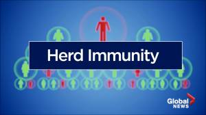 COVID-19: Herd immunity explained (01:43)