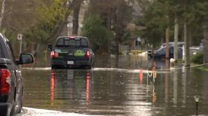 Île Bizard residents worry they aren't ready for more spring floods