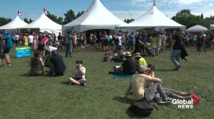 Will festivals return to Edmonton this summer? (01:57)